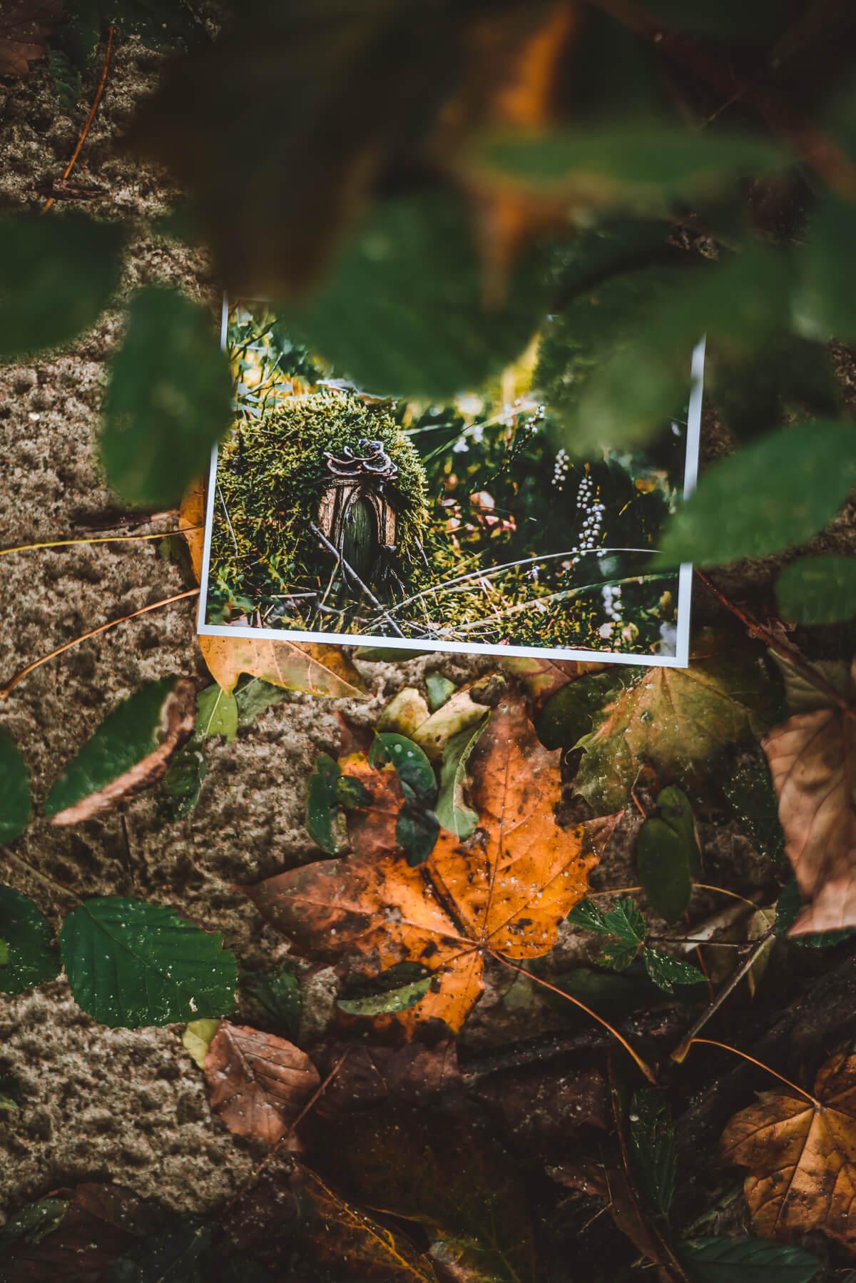 Pocztówki marcelina łukaszek